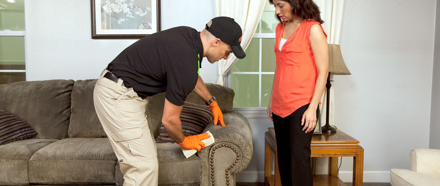 Livermore, CA carpet upholstery cleaning